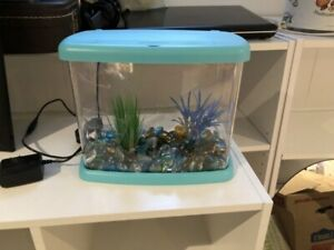 1 Gallon Fish Tank