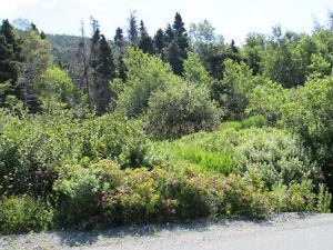 155-161 COUNTRY PATH ROAD - LONG POND, CBS St. John's Newfoundland image 6