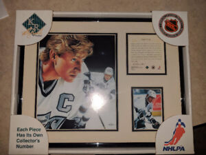 Wayne Gretzky numbered picture