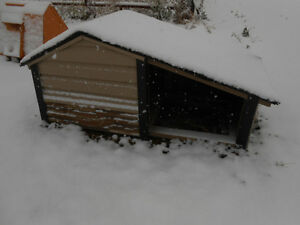 Winter Doghouse