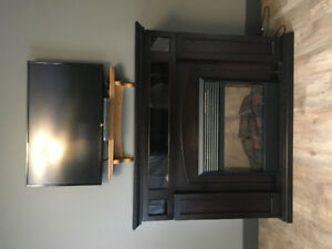 Electric fireplace with entertainment storage