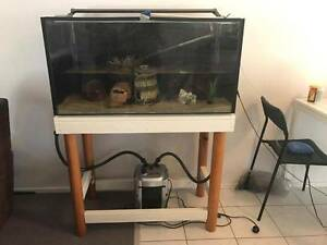 REDUCED - Fish tank plus accessories Bundall Gold Coast City Preview