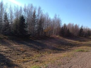 Land for sale in Grand-Batachois, NB