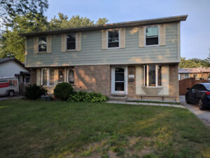 Immediately available rent: 3 br semi-detached house in Hamilton