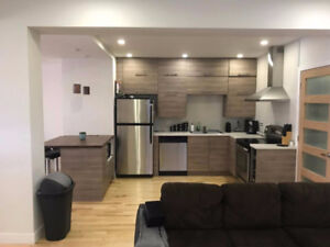 Room in a brand new apartment in the heart of the Plateau.JAN1st