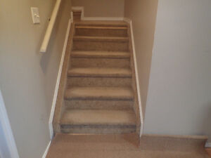 Furnished Basement Room For Rent In Ellerslie (66th Street)