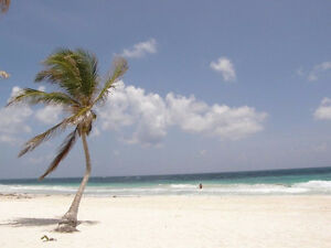 White sandy Beachfront lots starting from 99 000 USD, see video