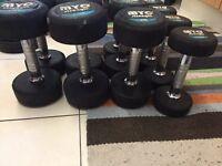 Gym equipment (dumbells, kettlebells, barbells...)