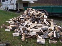 Poplar Firewood