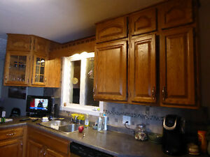Oak Kitchen Cabinets and stove/cooktop