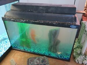 Aquarium Fish Tank complete with extras all working and set up