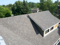 Roof repairs /eavestrough cleaning