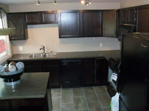 """""""MATURE FEMALE""""!!!-ONE ROOM AVAILABLE - BY ST DENNIS CENTRE!! Windsor Region Ontario image 2"""