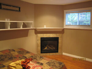 Basement room with separate entrance and private bath available