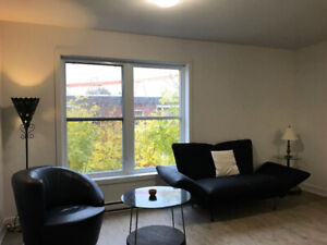 New 2 Bedroom Flat in Downtown - Furnished or Unfurnished