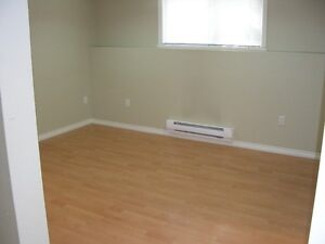 Vancouver West Two Bedroom Basement Suite For Rent