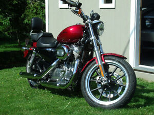 excellant condition 883 sportster, new tires