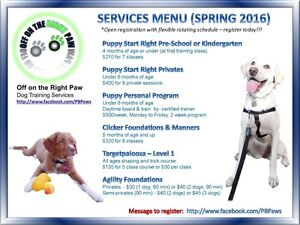 Off on the Right Paw - Puppy to Adult Dog Training Classes