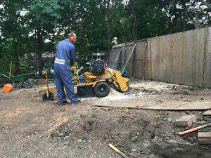 TREE STUMP REMOVAL/GRINDING >book now and save $$$$$ Kitchener / Waterloo Kitchener Area image 8