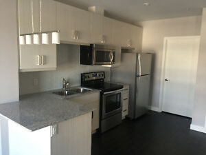 Brand New Executive 1 Bedroom Condo @ One Victoria st, Kitchener