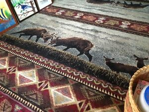 Thick 8x10 foot rug