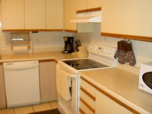 1 BDRM Furnished. INCL: AC, WIFI, CABLE, HYDRO and laundry, BBQ