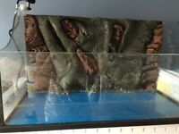 Turtle or reptile tank for sale !!!