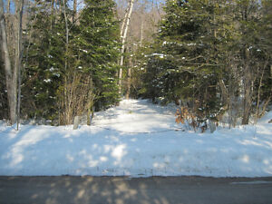 Cottage country triple lot in Wiarton