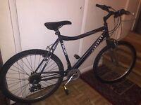 Raleigh Hercules bike