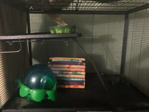 Ferret nation cage and supplies-make an offer