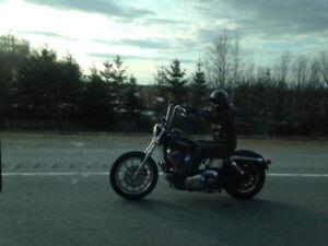 Harley Davidson DYNA FXD 2004 1450cc