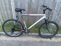 Raleigh AT10 Freerider, Serviced, Free Lock/Lights/Delivery