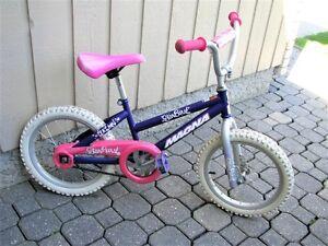 Girls Bike - 16 Inch wheels