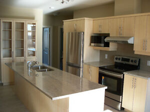 NEW Luxury 2BR PENTHOUSE on the Ottawa River, 7 min to Downtown