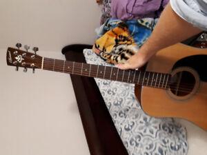 Bristol BD-16 Acoustic+Hardshell Case obo