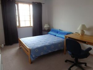 Large room in lower level, great location