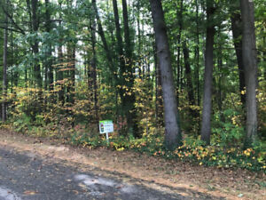 180+ Frontage - GRAND BEND LOT