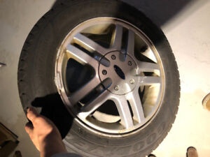 Ford Focus alloy wheels with winter tires