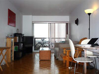 3 1/2 all furnished Parc Lafontaine