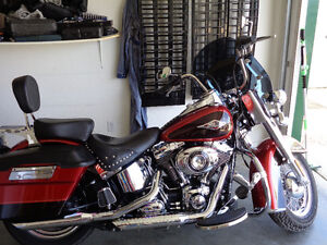 for sale 2013 harley softail