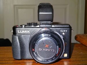 Panasonic GX1 Micro Four  with 14 - 42 mm Power Zoom Lens
