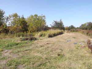 Level Building Lot - 0 Harpell Road
