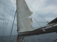 Tired, Stretched, Forlorn and Abused Sailboat Sails