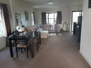 Room for rent $200pw includes all bills in Kelvin Grove