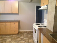 ONE BEDROOM BASEMENT SUITE- AVAIL SEPT 1