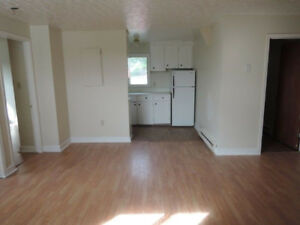 2 bedroom-upper flat laminate flooring