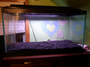 Large 50gallon fish tank