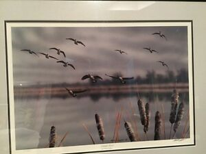 Limited edition, Ducks unlimited print