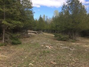 Hunting Camp and 100 acres on Manitoulin Island
