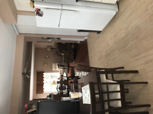A Must See - Beautiful 2 bedroom Apt- Feb 15 or March 1st 2018